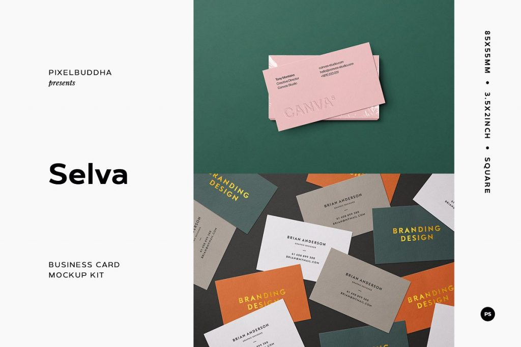 Business card Mockup Creator Kit