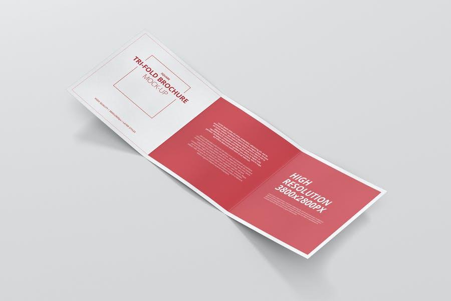 11 Square Tri Fold Brochure Mockup