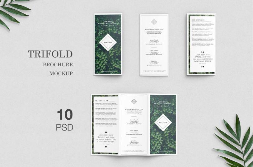 Elegant Tri Fold Brochure Mockup