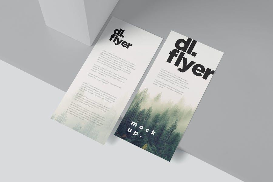 Single Page DL Flyers Mockup