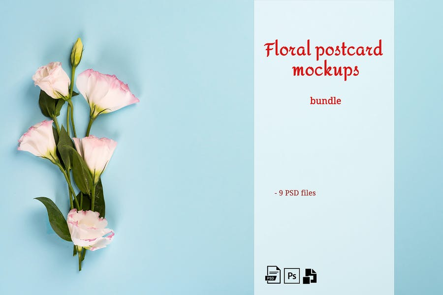Floral Postcard Mockups